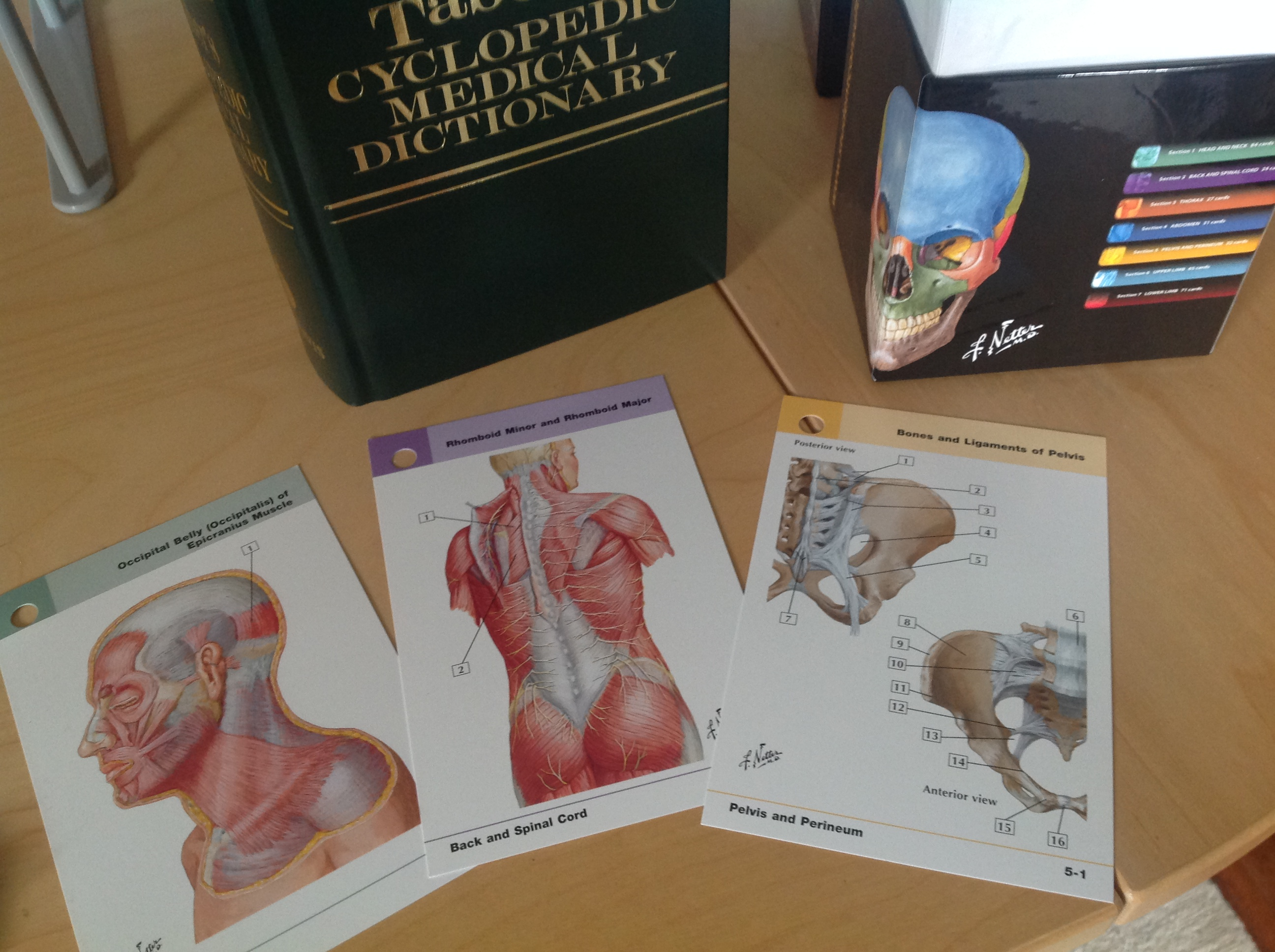 A Giveaway For Students Notes From A Student Midwife